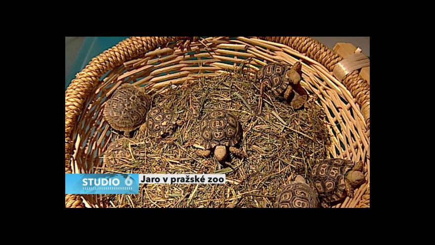 Video Rozhovor s Miroslavem Bobkem
