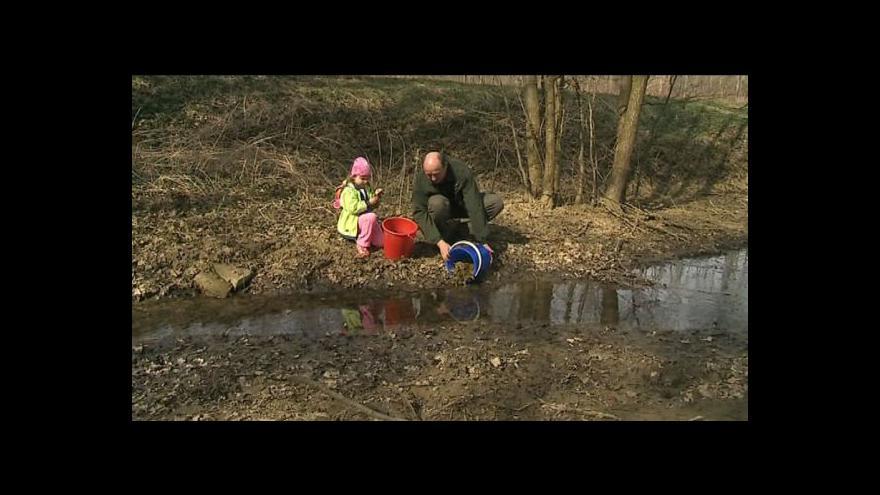 Video Radek Studenka zachraňuje žáby