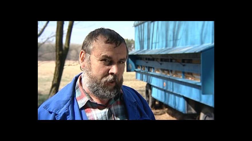 Video Včelař Josef Novák o ztrátě včelstev