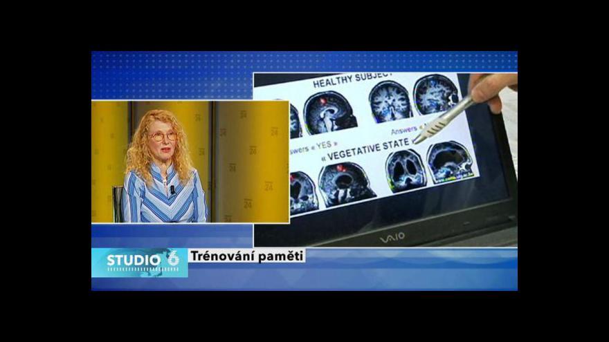 Video Rozhovor s Danou Steinovou