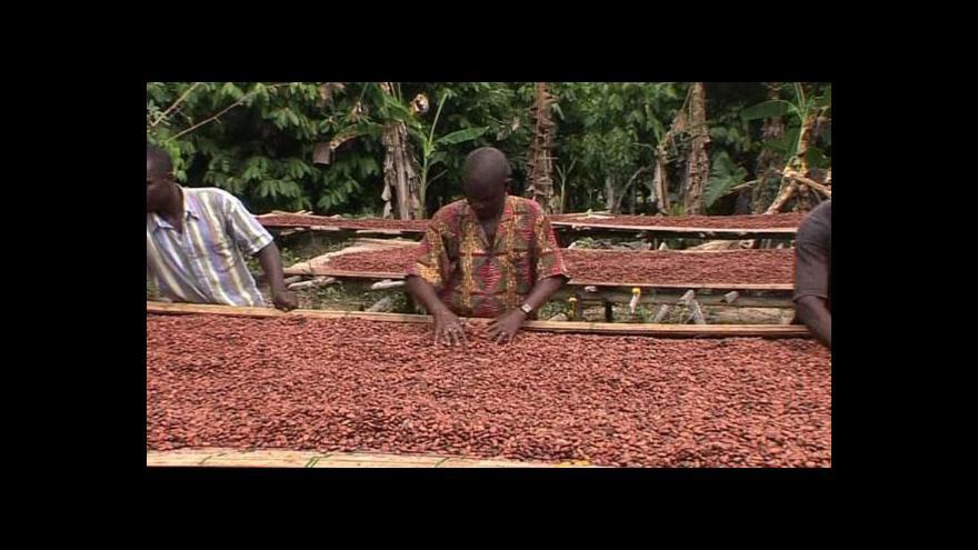 Video Špatné počasí snižuje úrodu kakaa v Ghaně