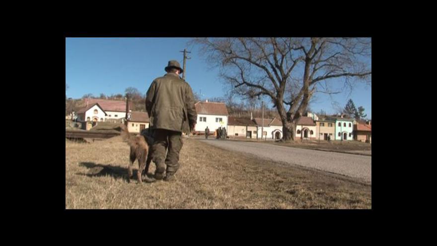 Video NO COMMENT: Sčítání zvěře