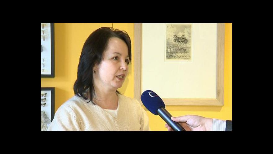 Video Kurátorka Markéta Mercová o výstavě motýlích grafik
