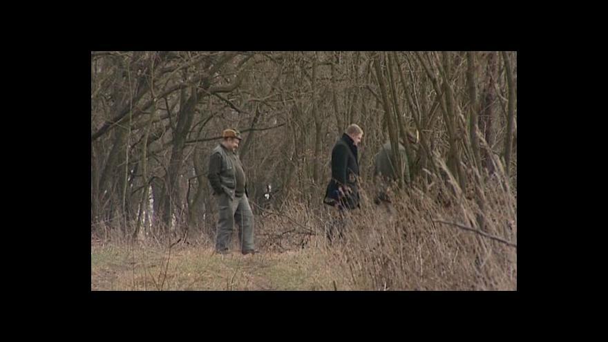 Video Revírník si stěžuje na zloděje stromů