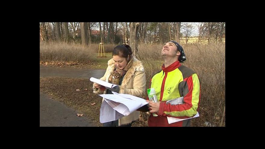 Video Arborista Jiří Skotnica o kácení stromů