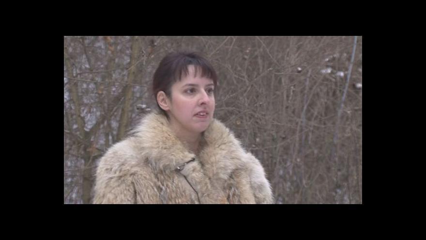 Video Mykoložka Hana Ševčíková o sběru hub v zimě