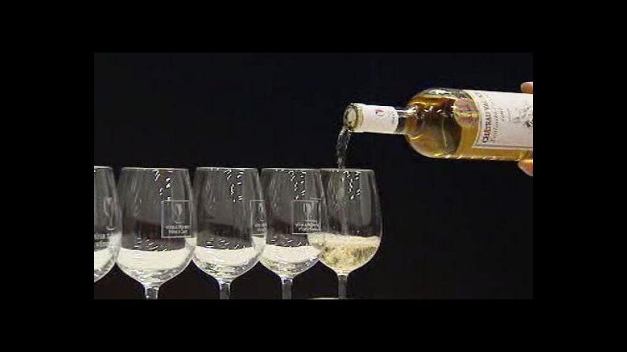Video NO COMMENT: Hodnocení vzorků v Salonu vín