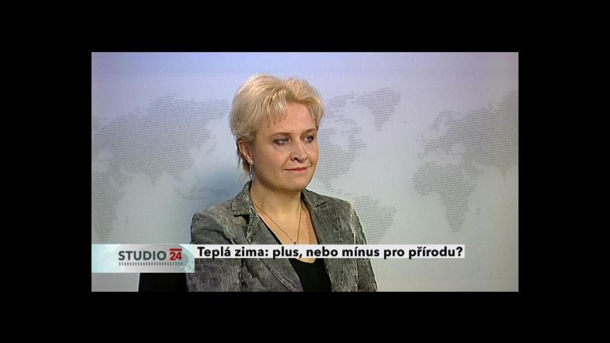 Video Rozhovor s Janou Albrechtovou