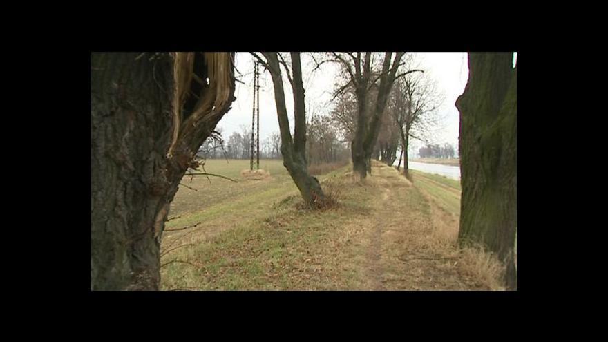 Video Mluvčí Povodí Moravy Veronika Slámová
