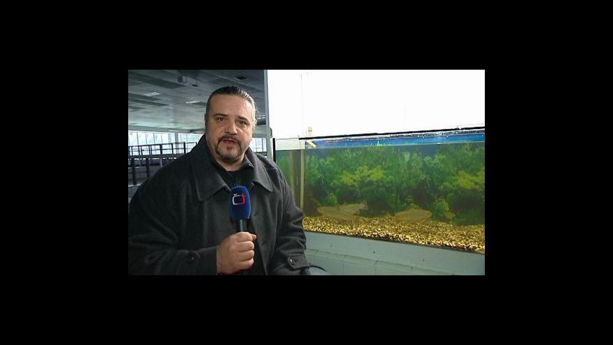 Video Reportáž Josefa Hladkého
