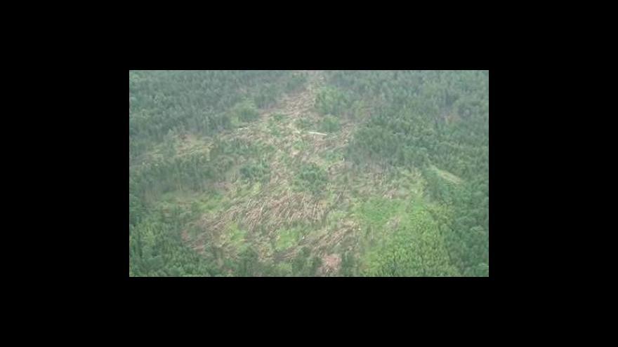 Video NO COMMENT: Masarykův les nyní - letecké záběry