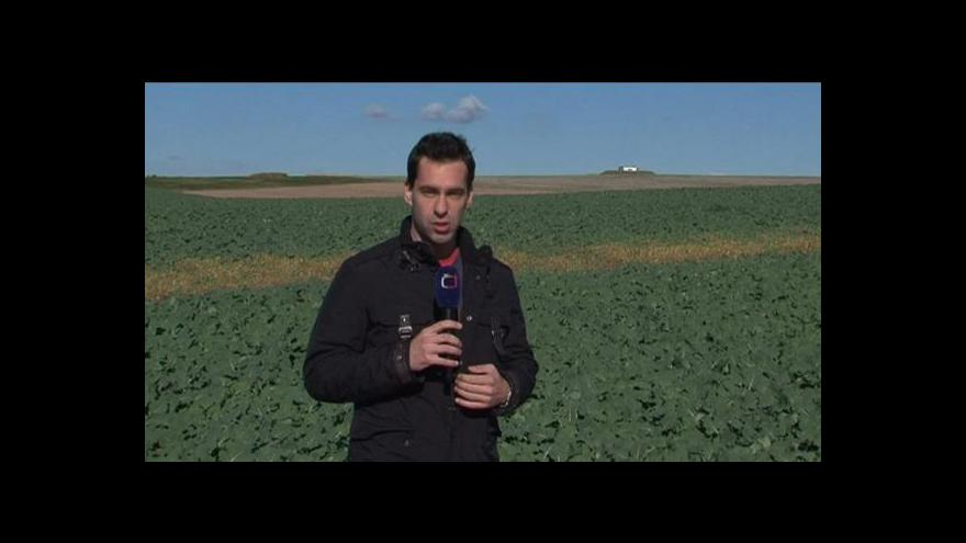 Video Reportáž Petra Kotrly