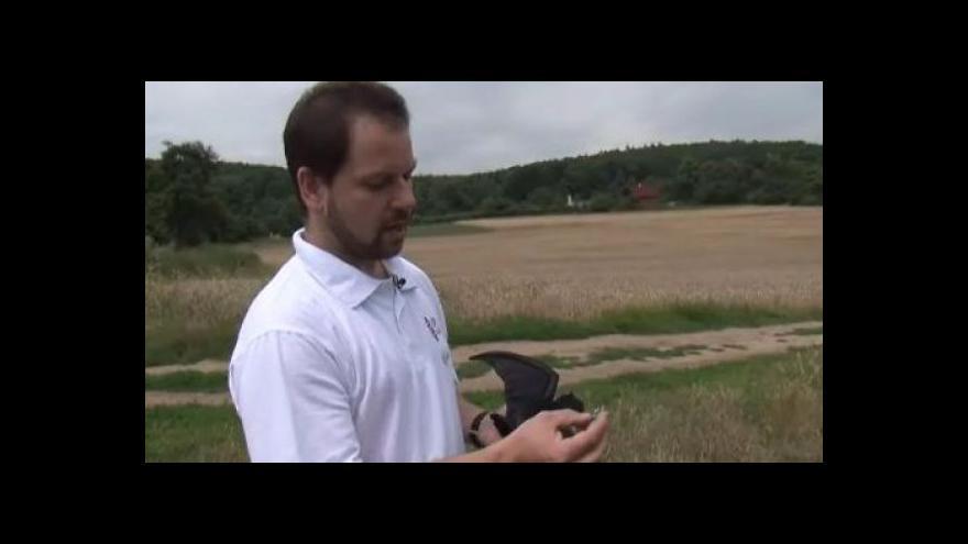 Video Spoluautor systému BAARA Petr Jedlička o označování zvířat