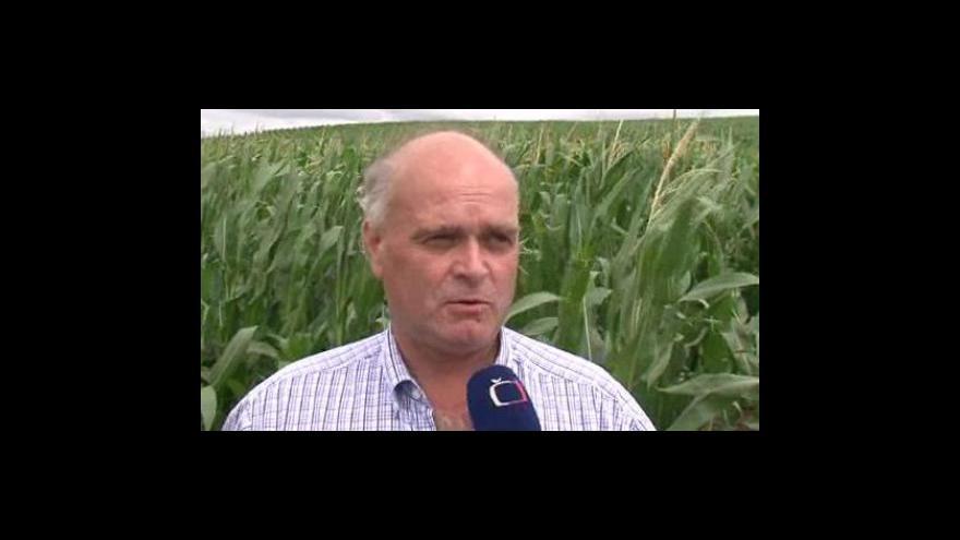 Video Ředitel Výzkumného ústavu meliorací a ochrany půdy Jiří Hladík o problémech s erozí v Jihomoravském kraji