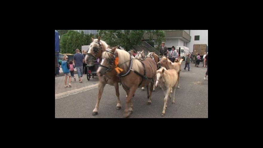 Video No comment: Výstaviště ovládla zvířata