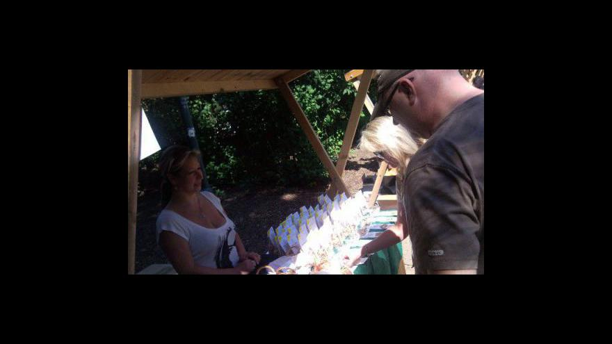 Video NO COMMENT: 1. farmářské trhy v parku Koliště