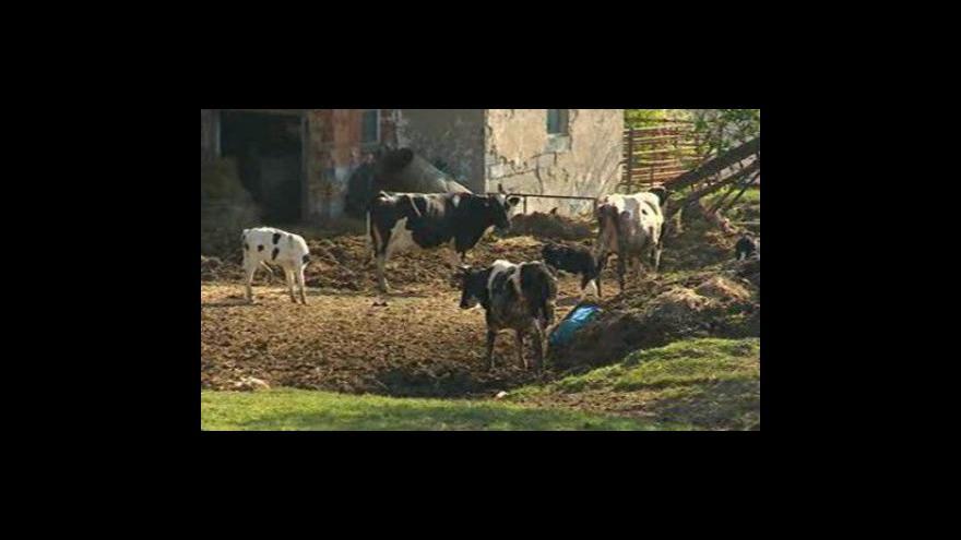 Video Květoslav Fryšták  z uherskohradišťské radnice
