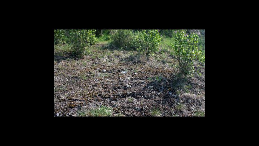 Video Krumlovsko rokytenské slepence a údolí Rokytné
