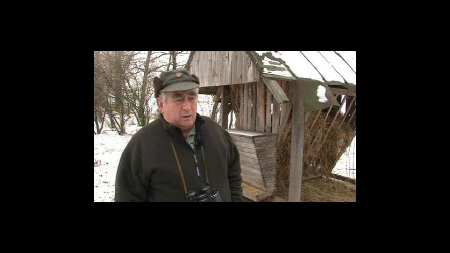 Video Předseda Břeclavské myslivecké komise Karel Varmuža o úbytku drobné zvěře