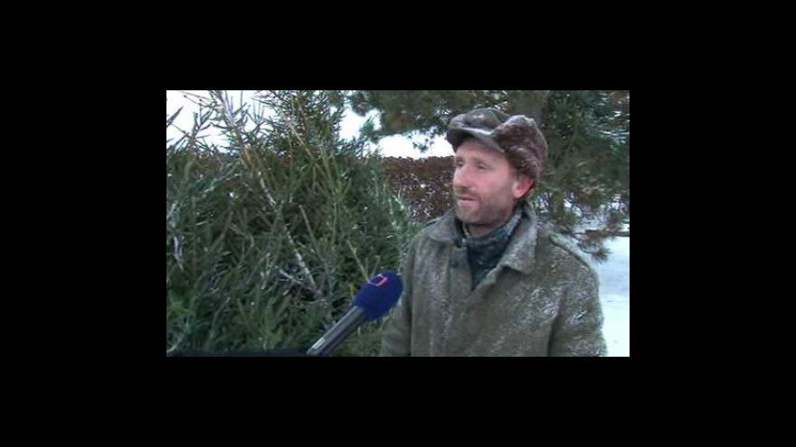 Video Hajný Václav Kalinec z Bukovinky o pořezu a prodeji vánočních stromků
