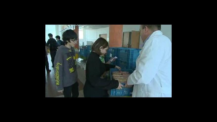 Video Ředitel vsetínské školy rozdával žákům bagety