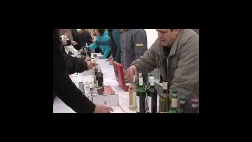 Video Na náměstí Svobody se ochutnává svatomartinské víno