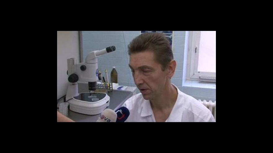 Video Lékař Fakultní nemocnice Brno Igor Crha o nové metodě vyšetřování spermií
