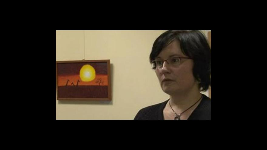 Video Organizátorka výstavy Ilja Rajdová o tvorbě Šárky Dvorské