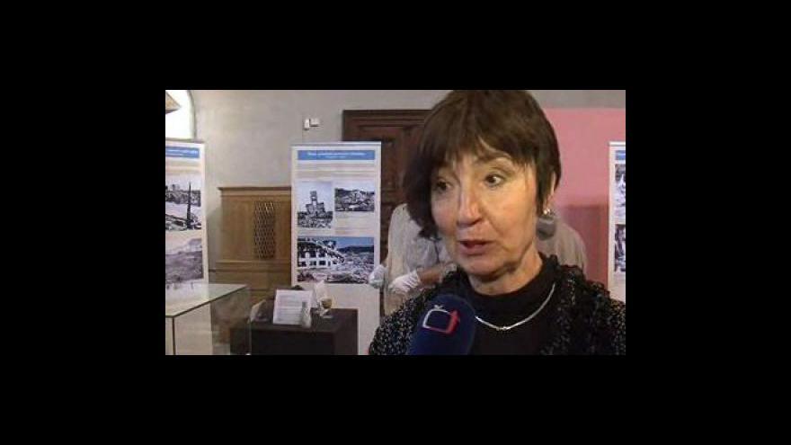 Video Kurátorka výstavy Hana Dvořáková