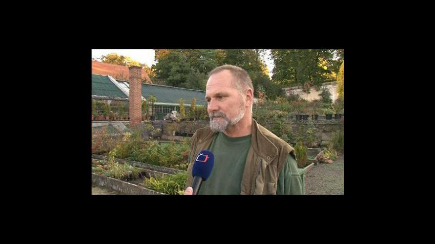 Video Zahradník Evžen Kopecký o opravě zámeckého skleníku