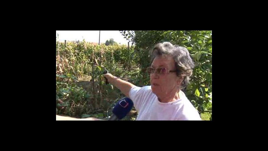 Video Argumenty břeclavských zahrádkářů