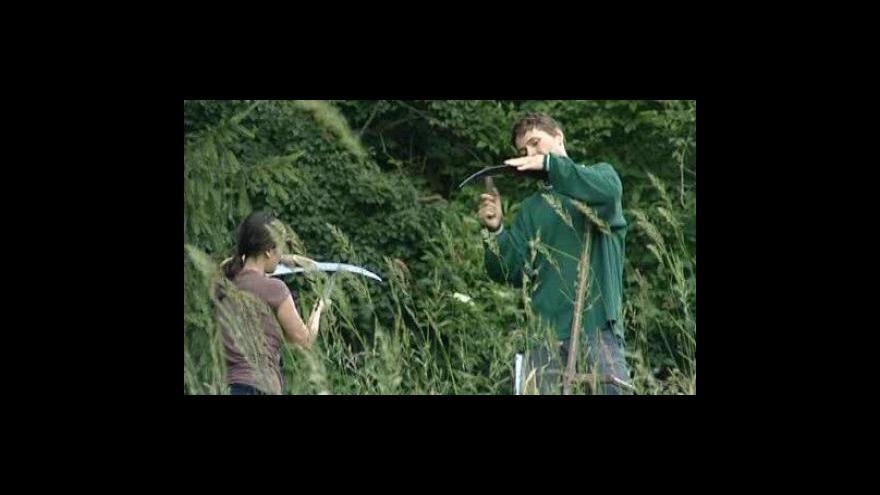 Video Dobrovolníci kosí louky s orchidejemi