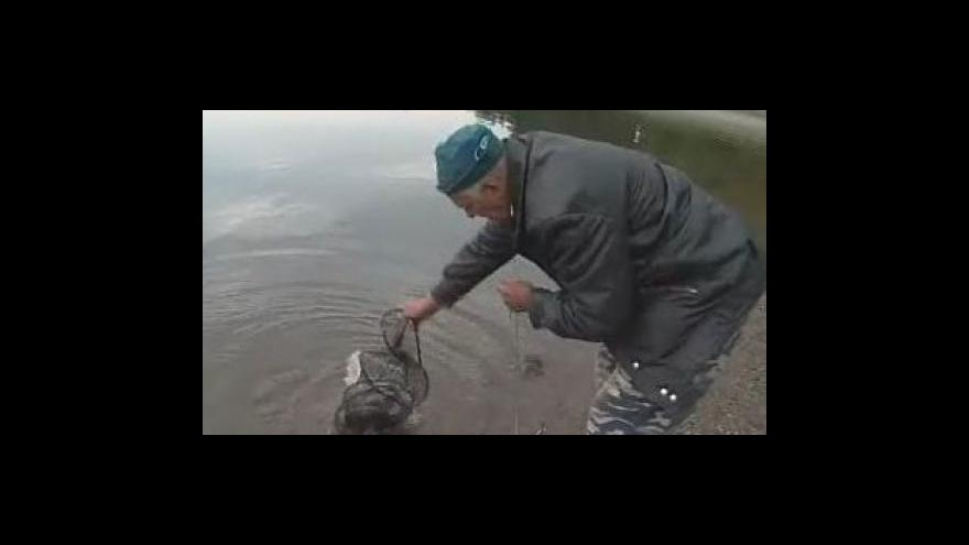 Video Bez komentáře: Výlov Plumlovské přehradě