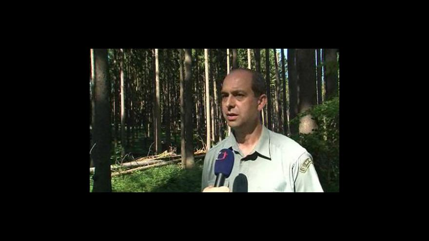 Video Rozhovor s Jaromírem Halámkou, Školní lesní podnik Křtiny