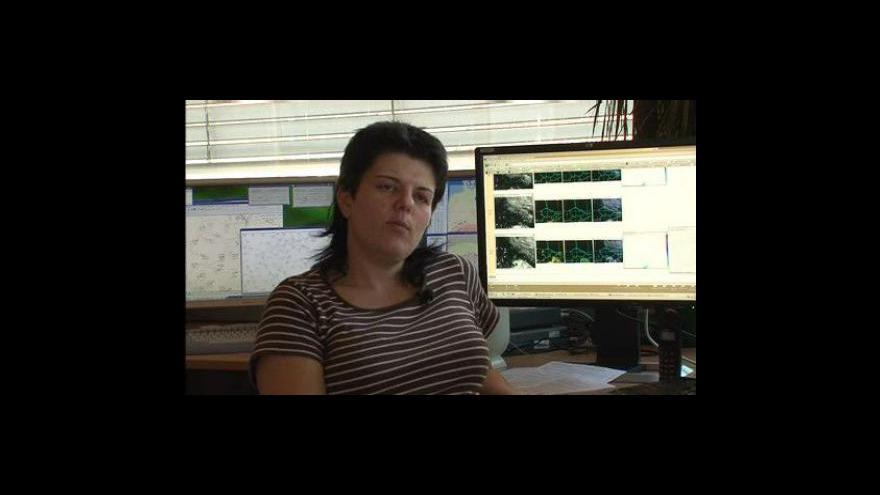 Video Meteoroložka Jitka Kučerová o počasí v tomto týdnu
