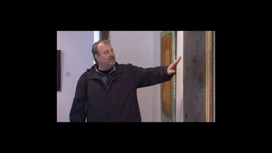 Video Výstava malíře Michala Magniho