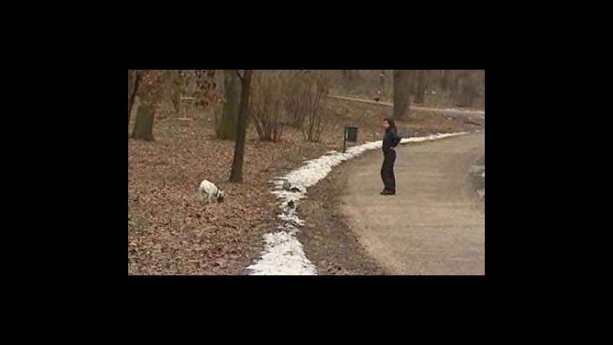 Video Roztávající sníh odhalil ještě víc psích nečistot