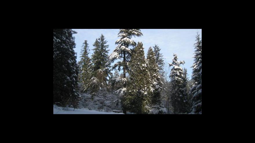 Video Odbahňovací práce v Arboretu Křtiny