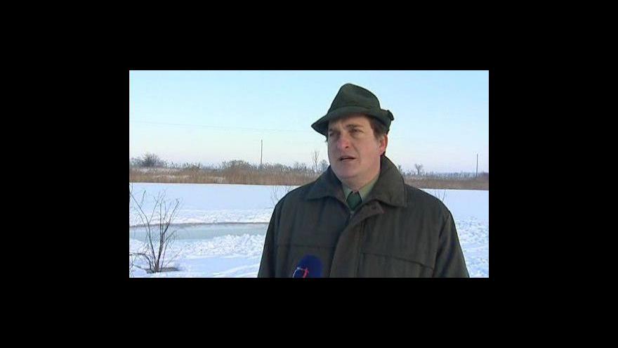 Video Zootechnik Vladimír Chytka hovoří o problémech se zamrzáním rybníků