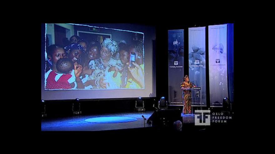 Video Rozhovor s bývalým velvyslancem v západoafrických zemích