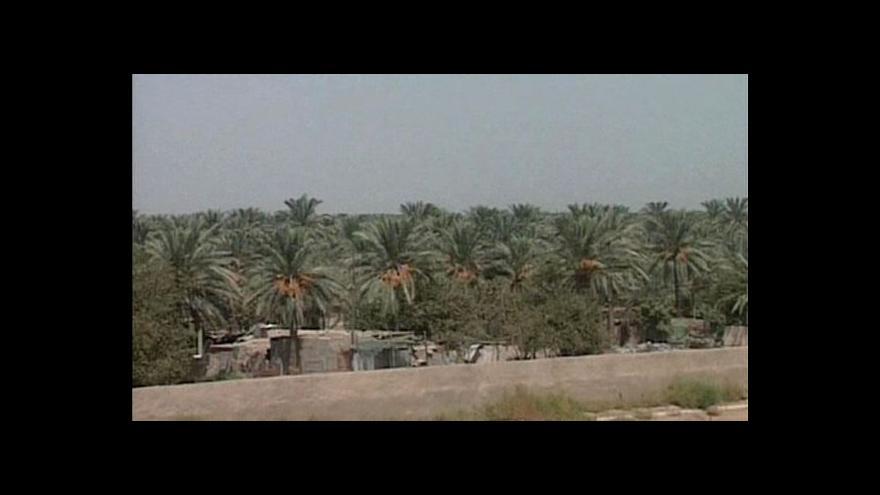 Video Irácké datle jsou opět na vzestupu