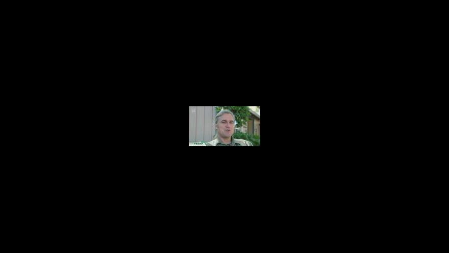 Video Databáze přejetých zvířat