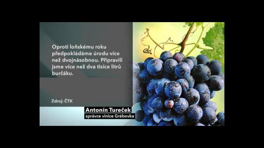 Video O víkendu ovládne Prahu vinobraní