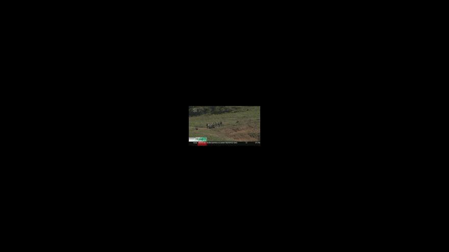 Video Ostrov Skomer