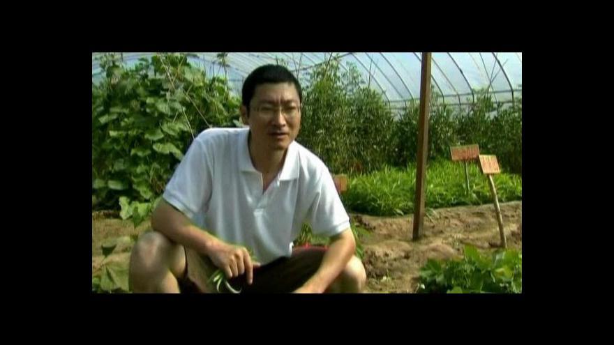 Video Pronájem polí v Číně