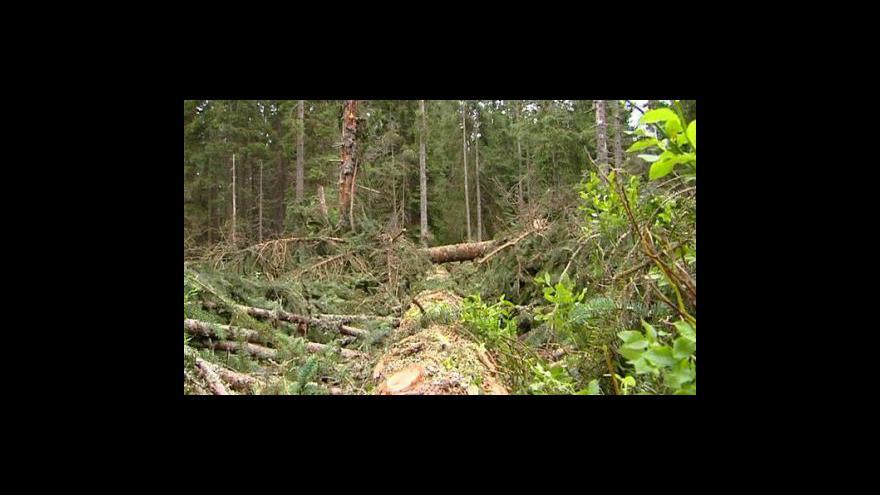 Video Rozhovor s Jiřím Zimolou a Jaromírem Kyzourem