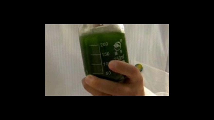 Video Letadla budou poháněna biopalivem