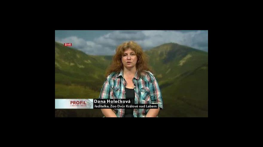 Video Rozhovor s Danou Holečkovou