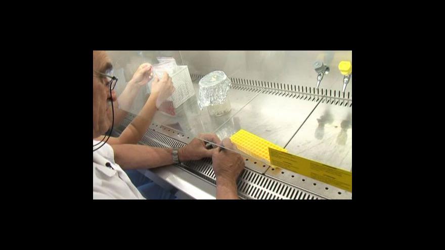 Video Studio ČT24 k epidemii E.coli