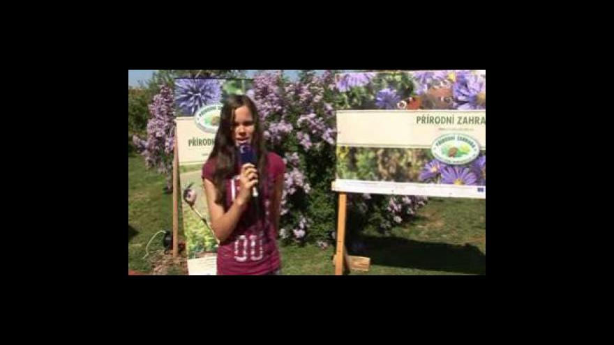 Video Reportáž Anety Ryglové